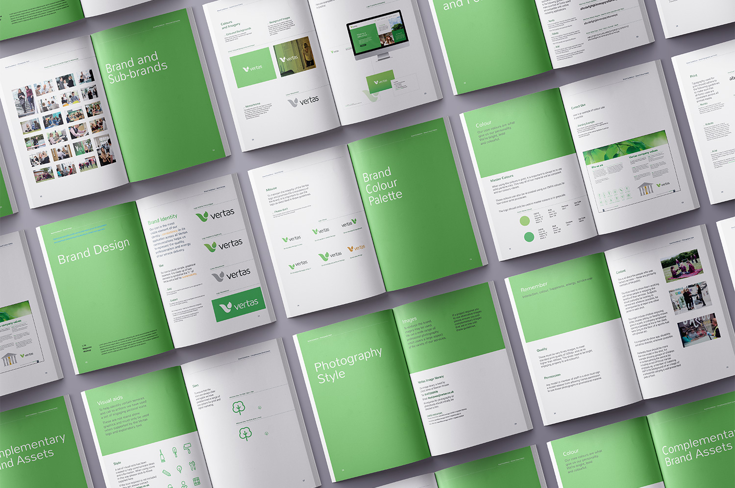 Vertas brand guidelines pages