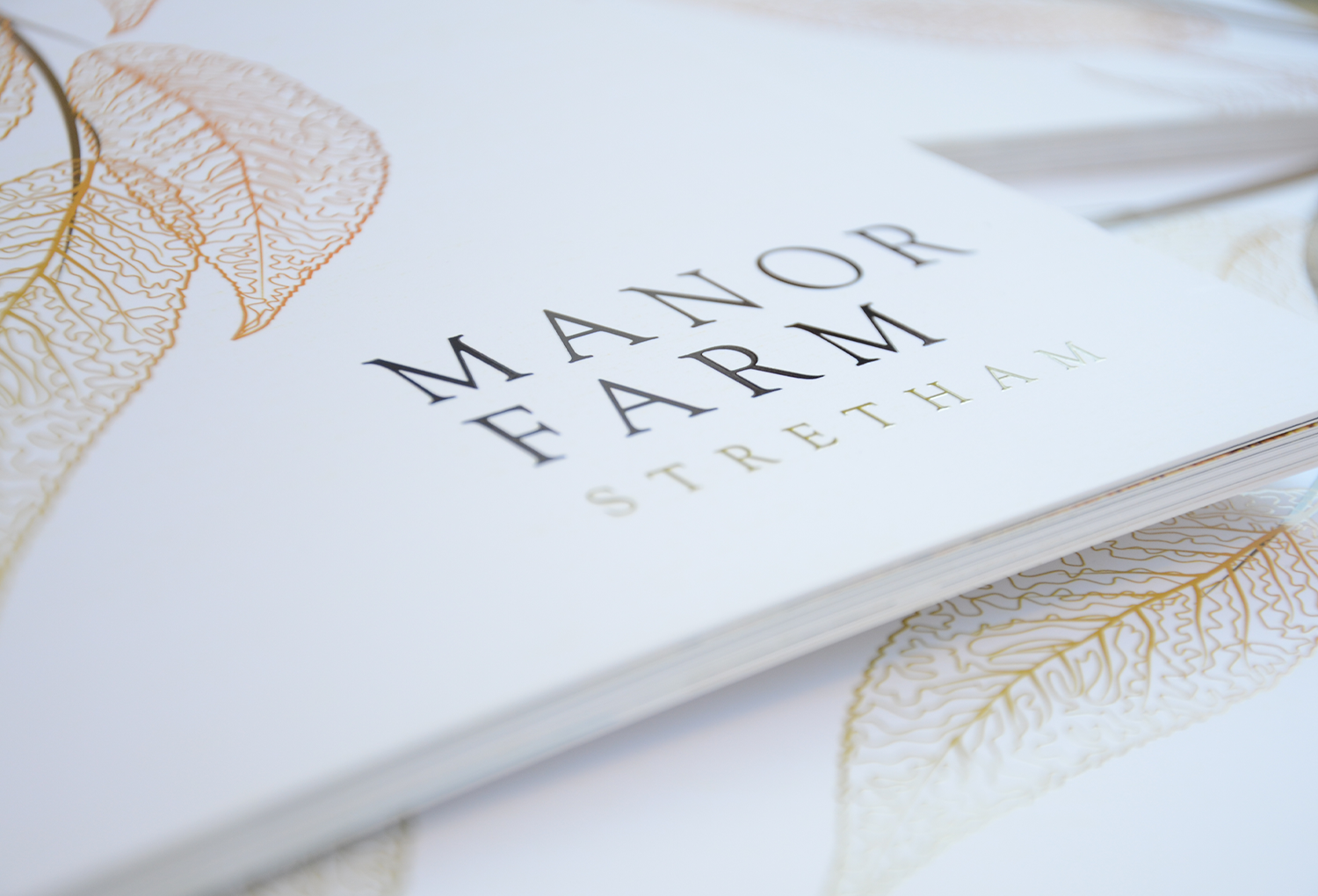 Manor Farm closeup