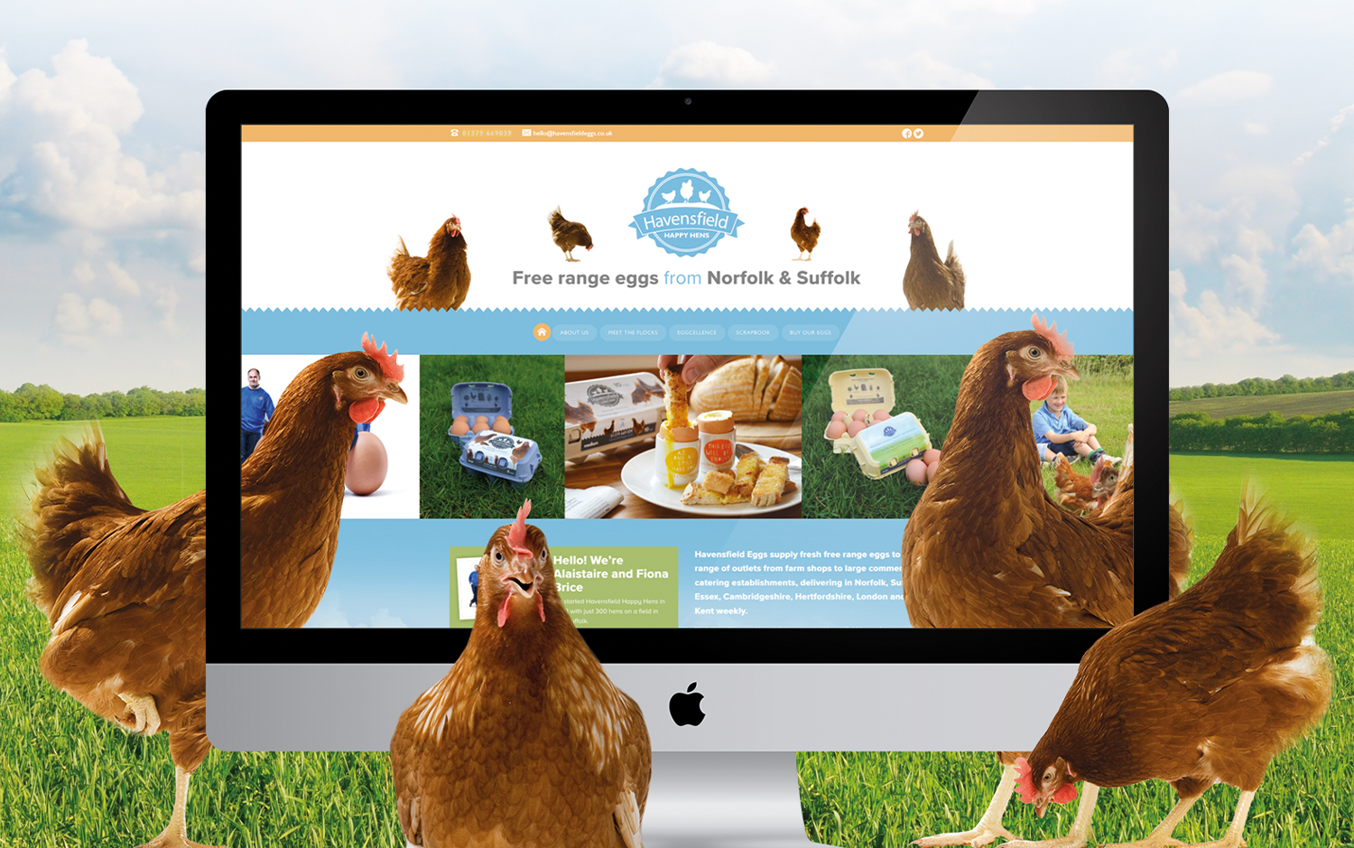 Havensfield homepage plus chickens!