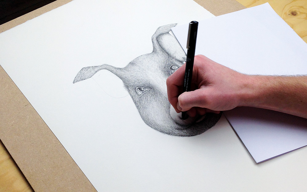 Creating the Unruly Pig illustration