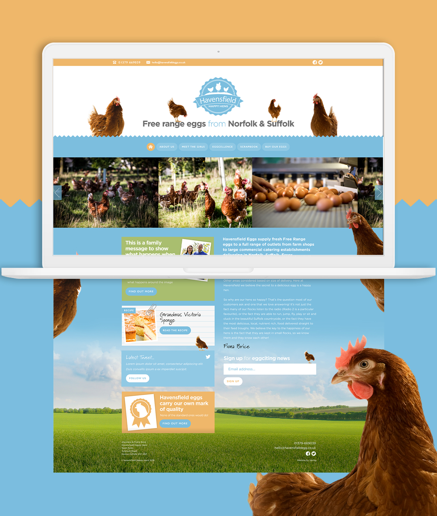 Havensfield laptop site pages